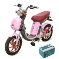 acquy xe đạp điện Nijia