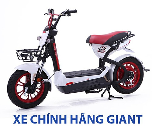 xe đạp điện 133S giant chính hãng