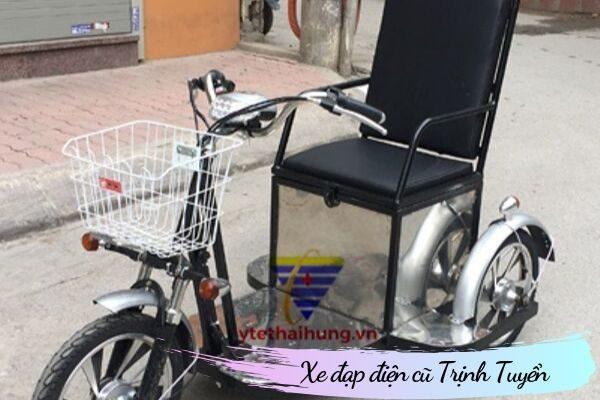 Xe đạp điện 3 bánh cho người khuyết tật
